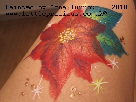 Face Painting, Face Painter, Body Painting and Glitter Tattoos in Oxford and Oxfordshire and surrounding areas by Mona Turnbull